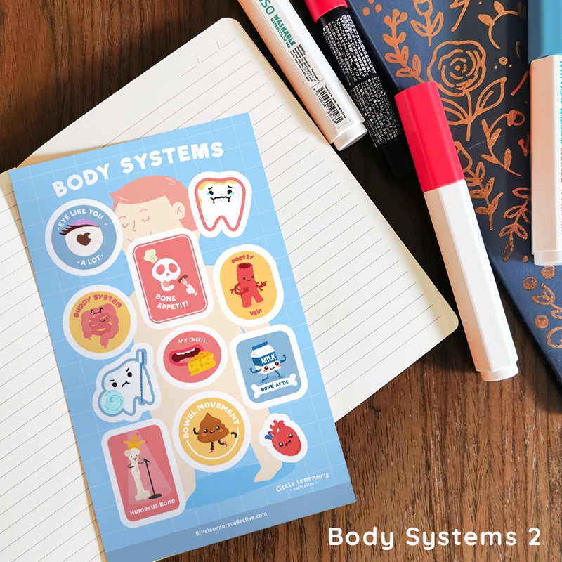 Body Systems Sticker Sheet
