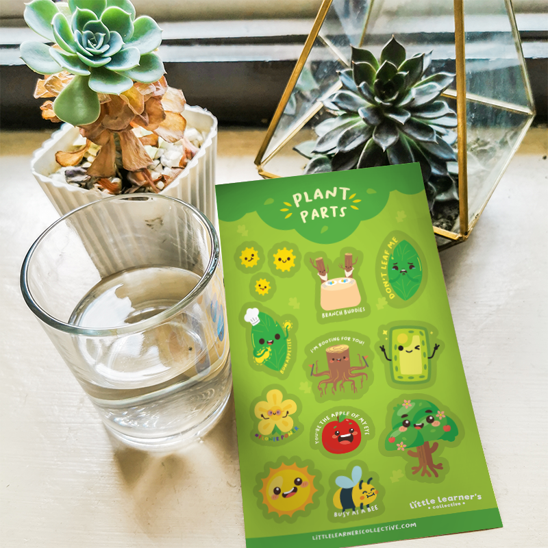 Plant Parts Sticker Sheet