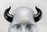 Succubus Cast Resin Horns
