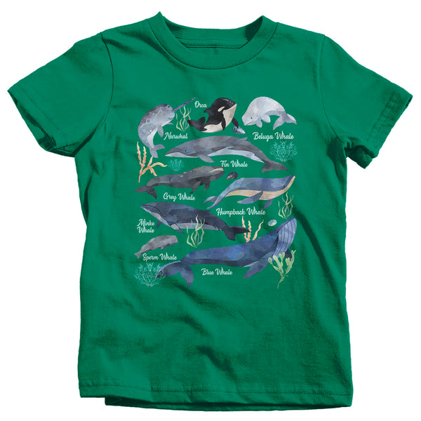 Kids Whale T Shirt Watercolor Whale Shirts Types Of Whales Shirt Illustrated T Shirt Whale Gift Idea-Shirts By Sarah