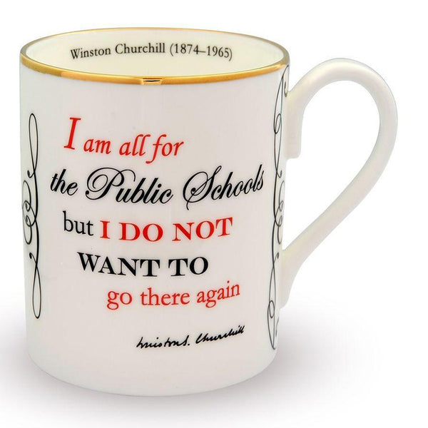 I am all for public schools... Mug
