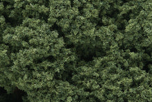 Load image into Gallery viewer, WOODLANDS SCENICS FC58 FOLIAGE CLUSTERS MEDIUM GREEN - (PRICE INCLUDES DELIVERY)