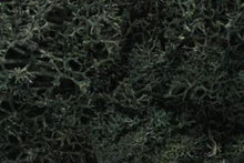 Load image into Gallery viewer, WOODLAND SCENICS LICHEN L164 DARK GREEN - (PRICE INCLUDES DELIVERY)