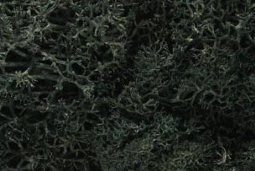 WOODLAND SCENICS LICHEN L164 DARK GREEN - (PRICE INCLUDES DELIVERY)