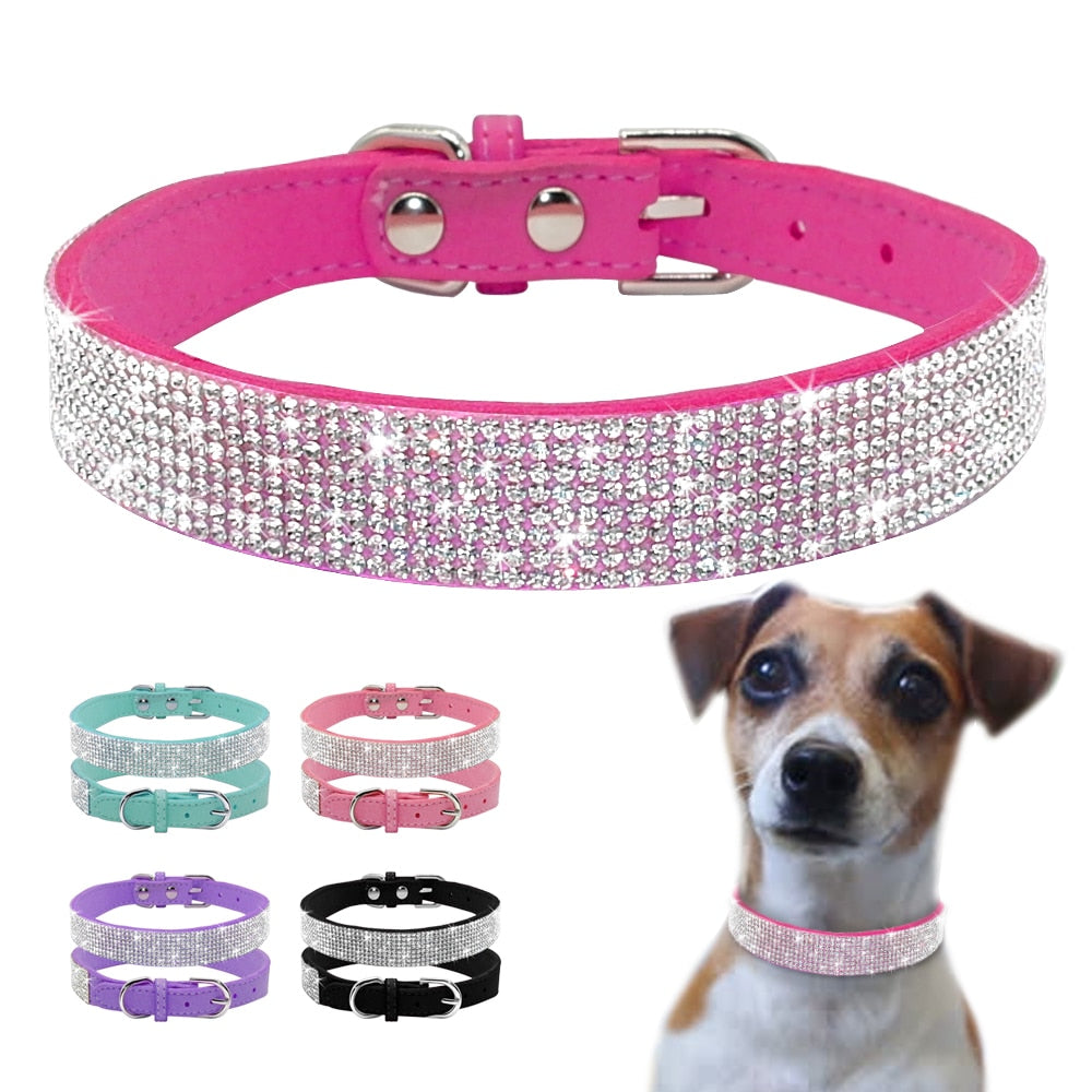 Bling Bling Shiny Puppy & Kitty Collars - Pet Smile Store