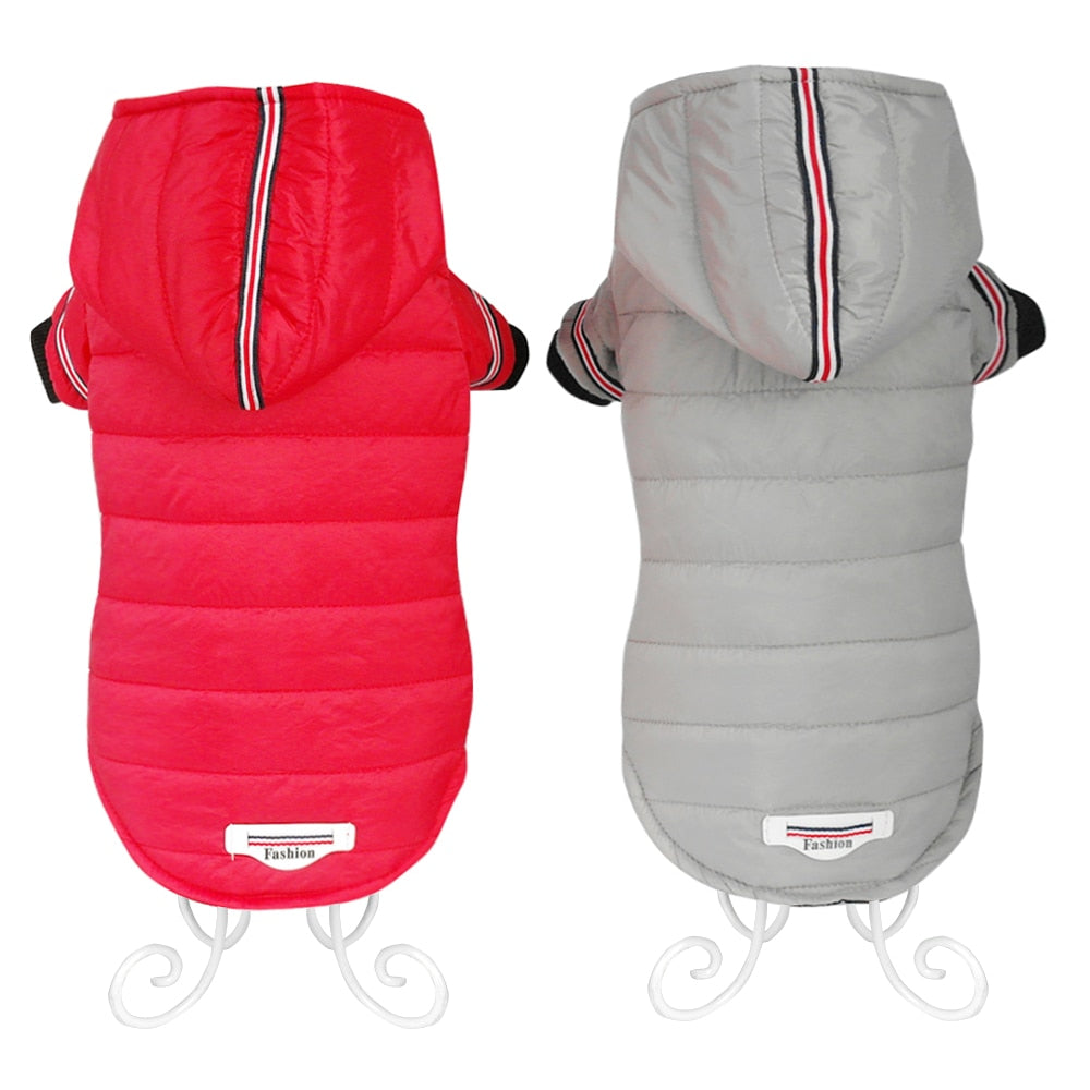 Warm Jacket with Hoodies for Dog - Pet Smile Store