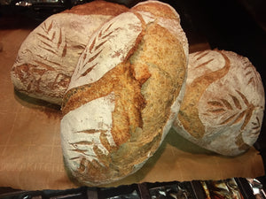 Whole Wheat Artisan's Bread