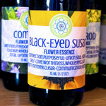 Load image into Gallery viewer, Black Eyed Susan Flower Essence