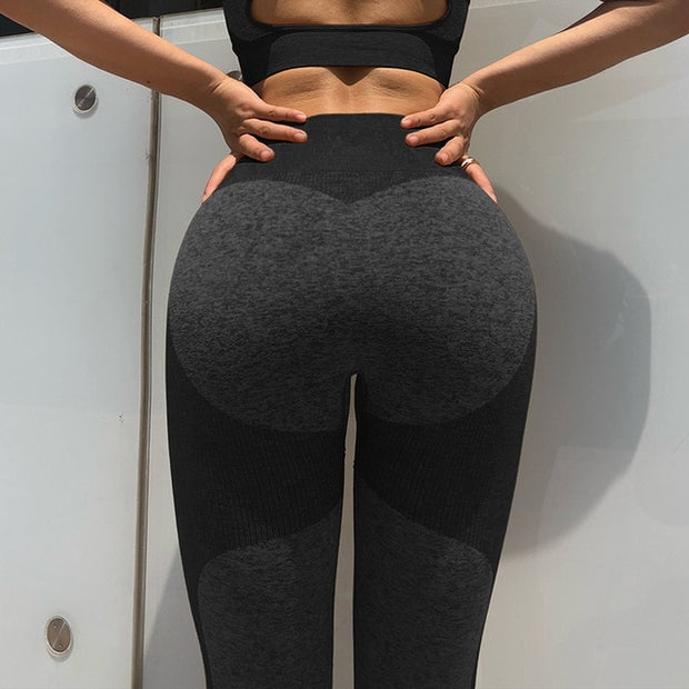 Seamless Workout Sports Tights