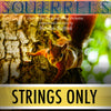 "PLAY ALONG - ""Squirrels"" (flute and strings) - STRINGS ONLY - AUDIO MP3 Accompaniment - Herman Beeftink"