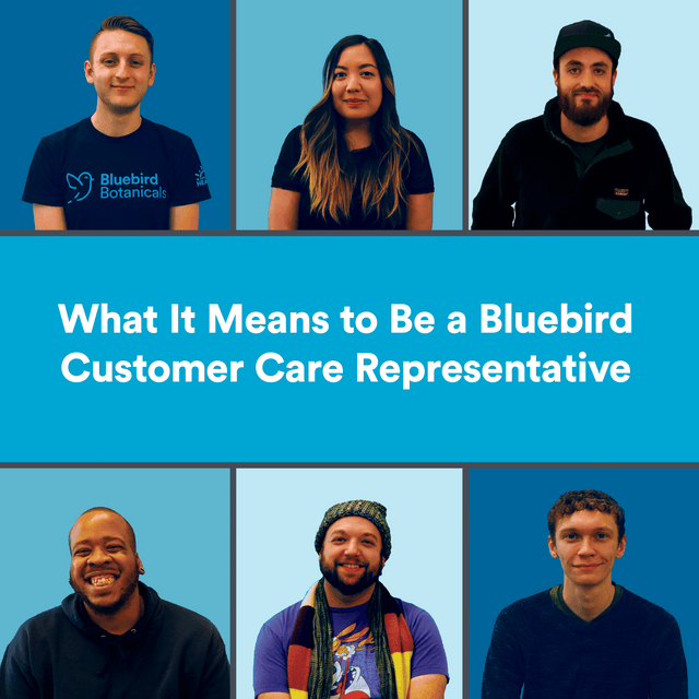 What It Means to Be a Bluebird Customer Care Representative