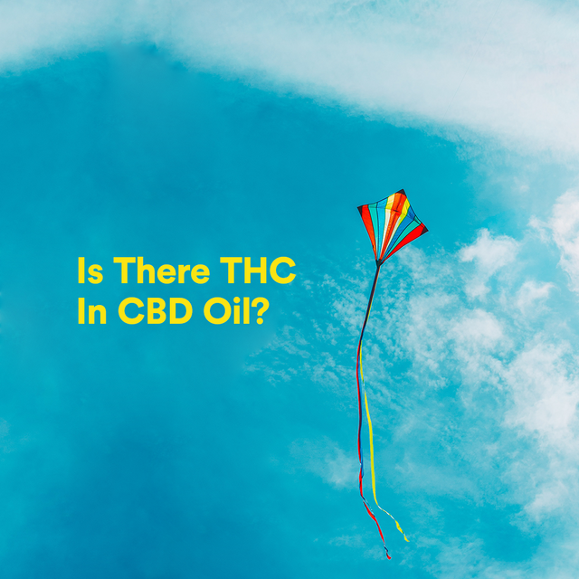 Is There THC in CBD Oil?