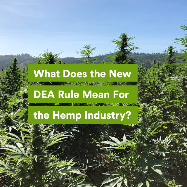 What Does the New DEA Rule Mean For the Hemp Industry?