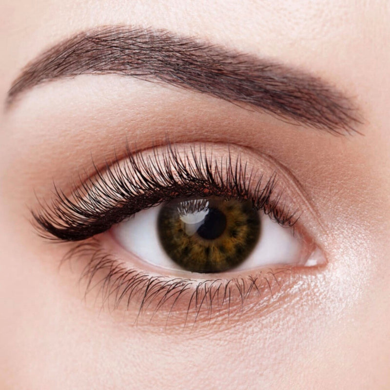 Coco Colored Contact Lenses (12 Month) - Opticals Online