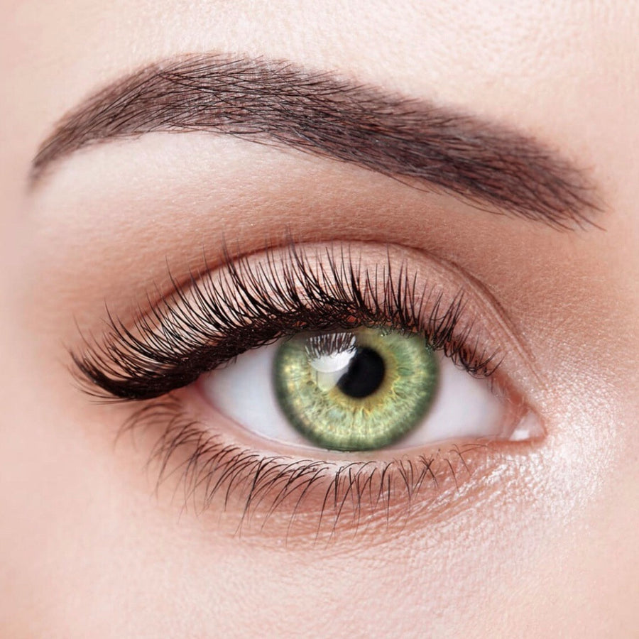 Lime Colored Contact Lenses (12 Month) - Opticals Online