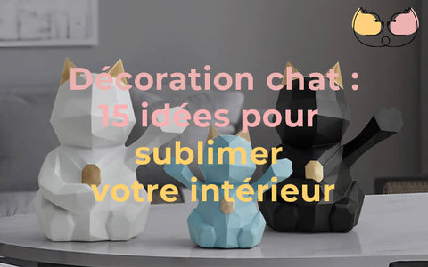 decoration chat