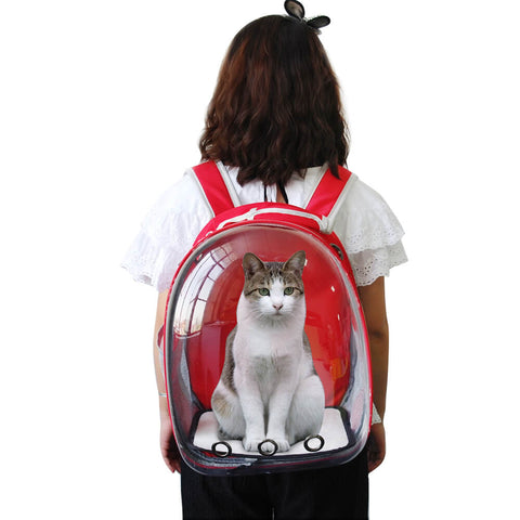 sac a dos chat vitre