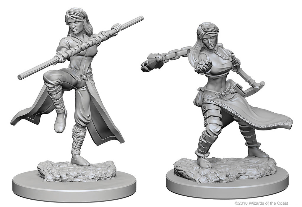 Dungeons & Dragons Nolzur`s Marvelous Unpainted Miniatures: W1 Human Female Monk
