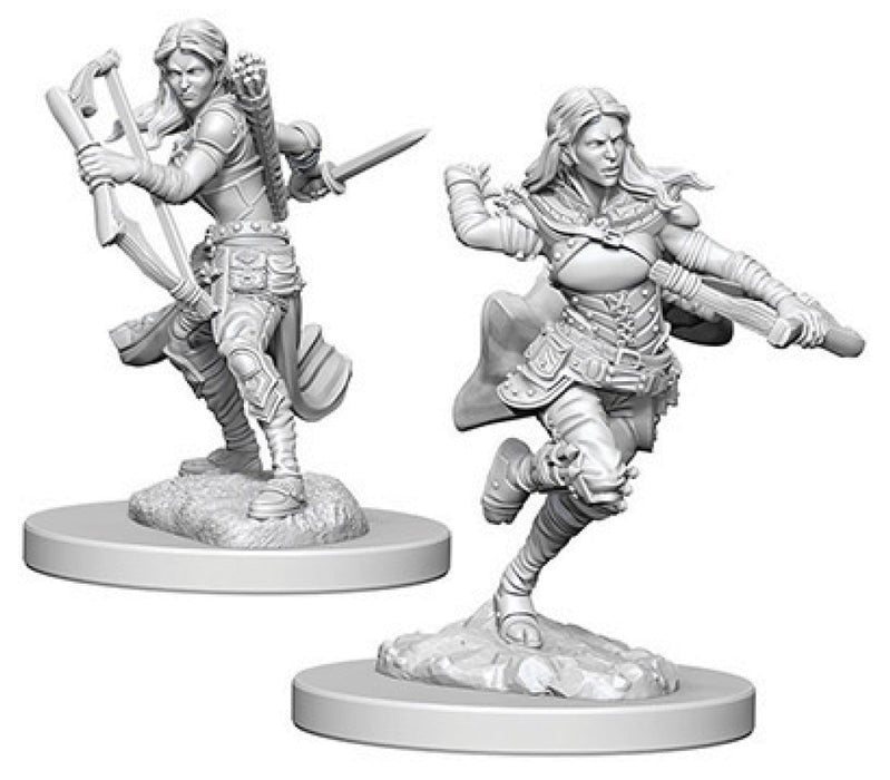 Dungeons & Dragons Nolzur`s Marvelous Unpainted Miniatures: W4 Air Genasi Female Rogue