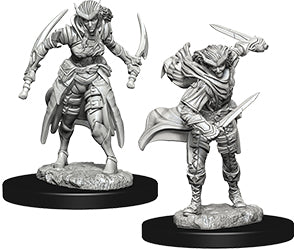 Dungeons & Dragons Nolzur`s Marvelous Unpainted Miniatures: W7 Tiefling Female Rogue