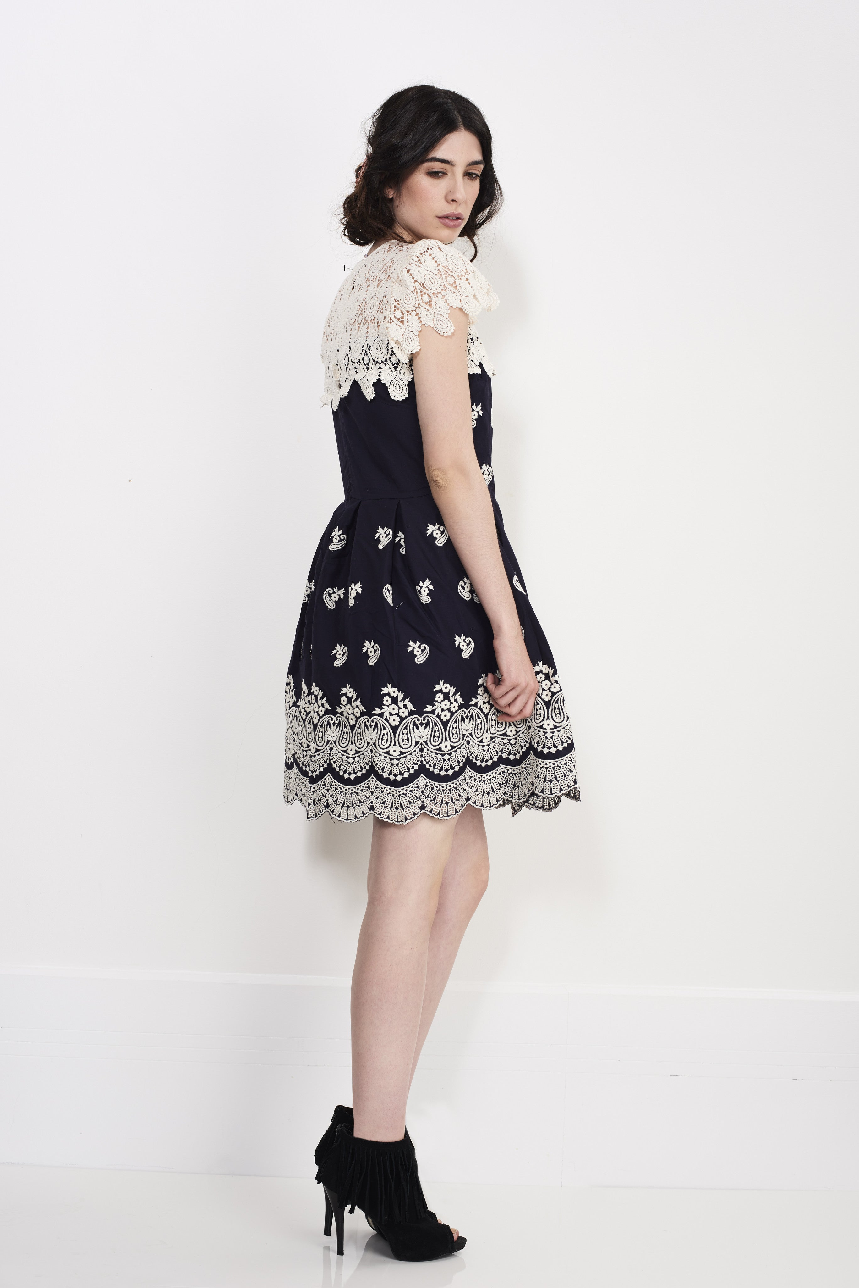 Scattered Embroidery Dress