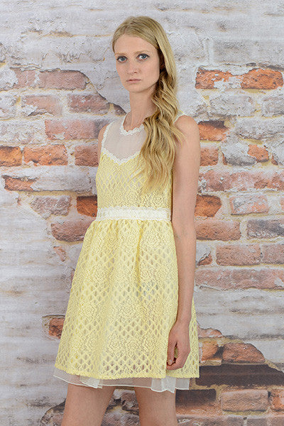 MESH YOKE LACE DRESS
