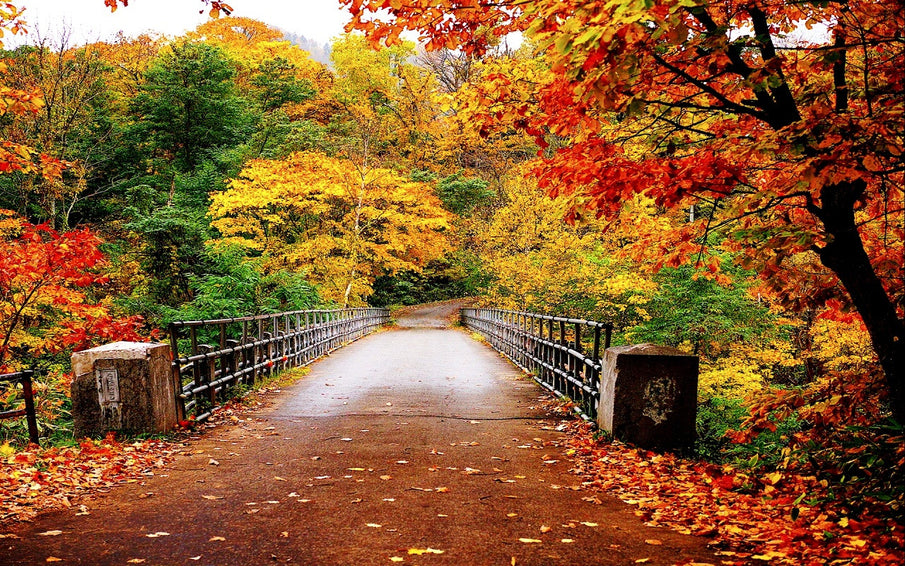 Where to travel in autumn?