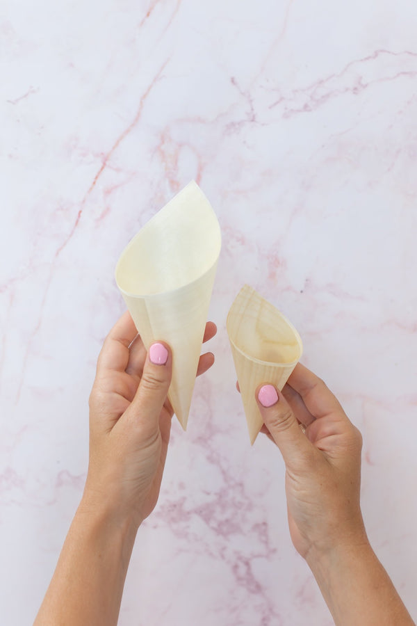 Biodegradable Confetti Cones (LARGE)