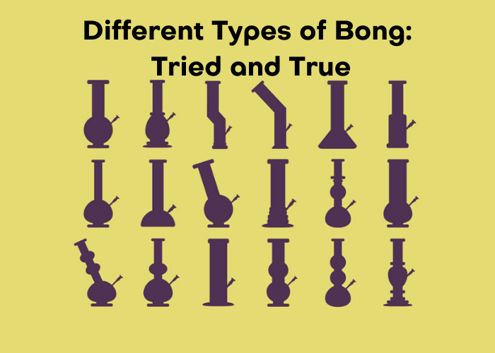 Different Types of Bong: Tried and True - Blog Namaste Vapes UK