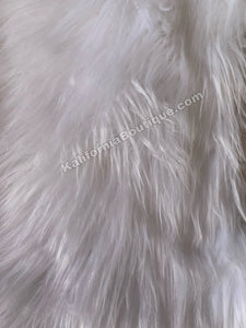 White Background Fur