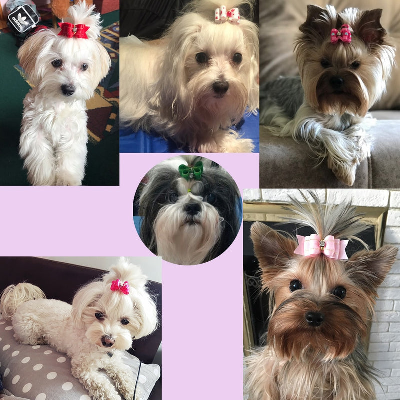 10pcs/lot Hand-made Small Dog Hair Bows