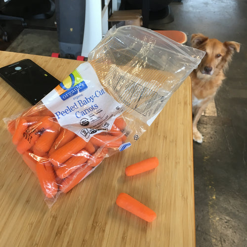 Carrot good dog carrot