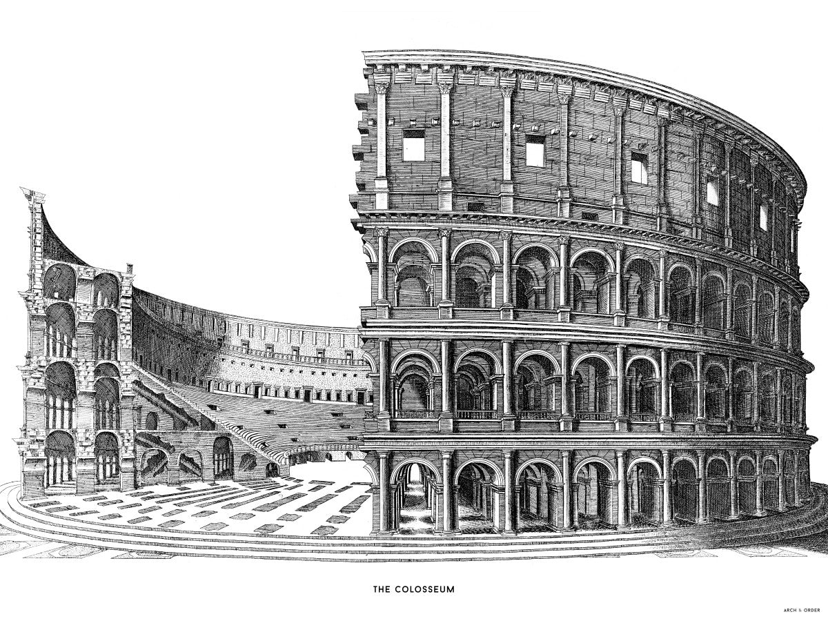 The Colosseum - Cross Section - White -