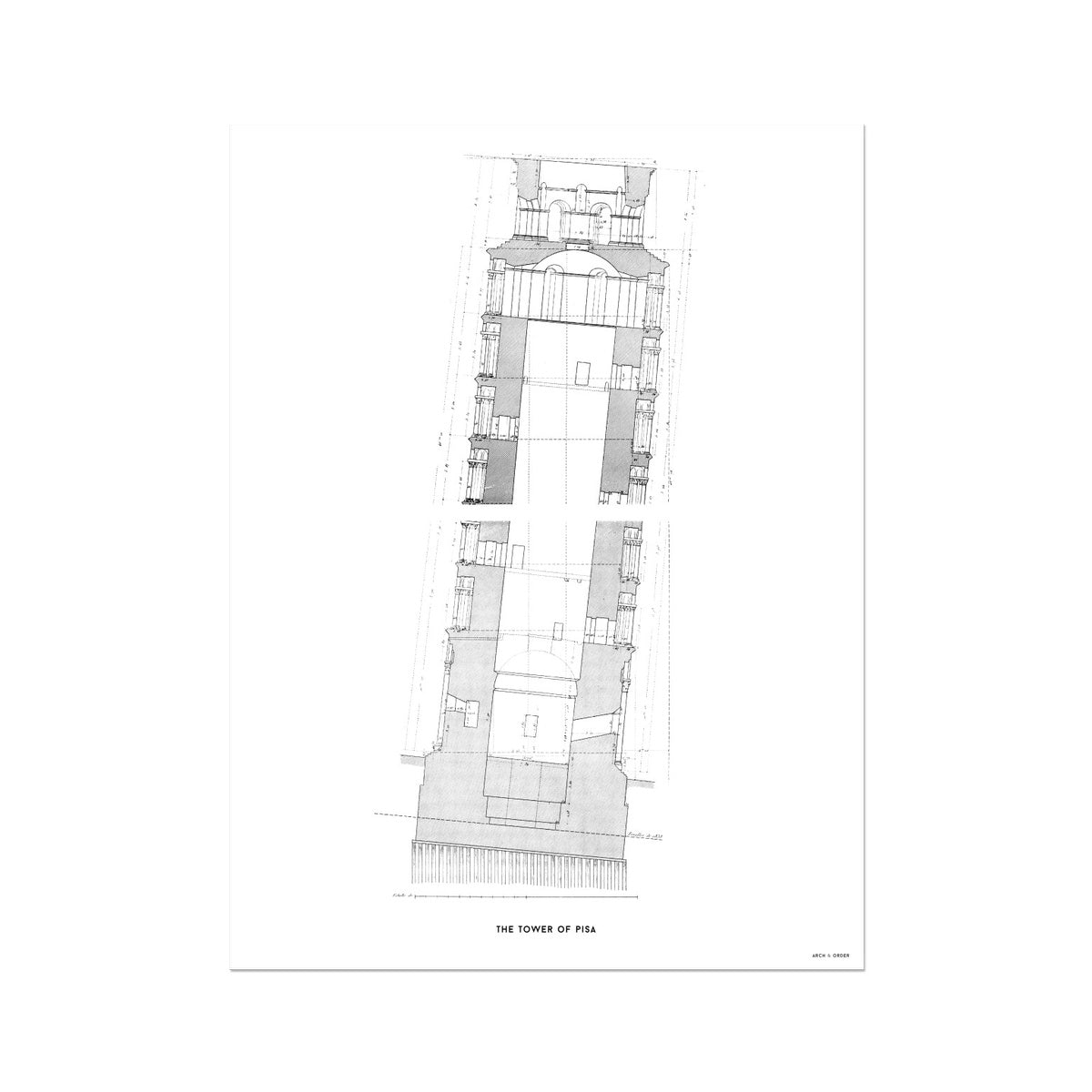 Tower of Pisa - Cross Section - White -  Etching Paper Print