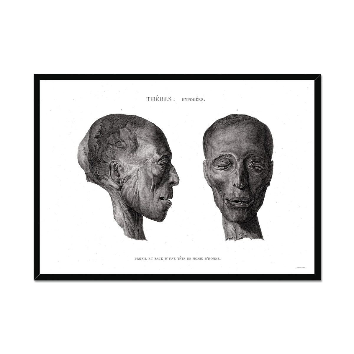 Mummy Head 1 - Egypt -  Framed Print