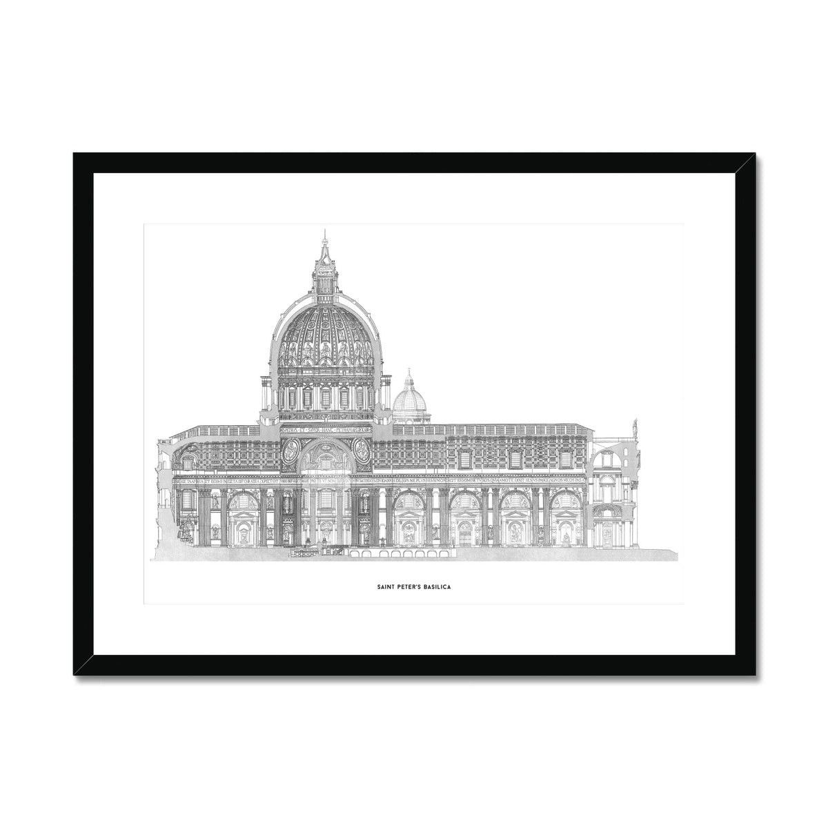 Saint Peter's Basilica - Side Elevation Cross Section - White -  Framed & Mounted Print