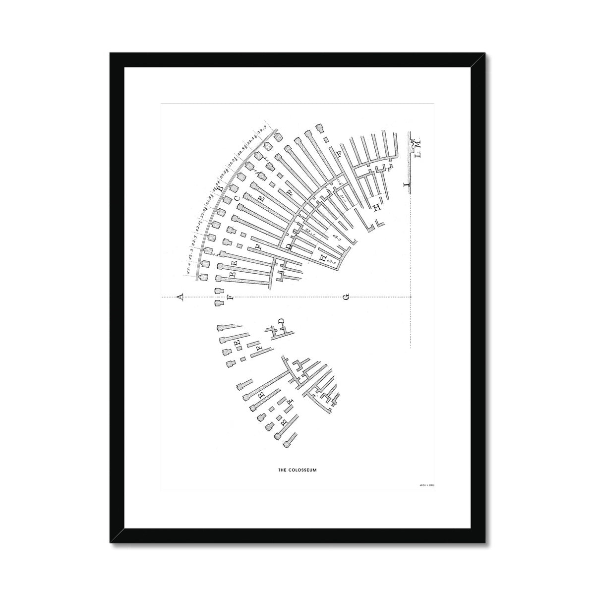 The Colosseum - Ruins Overview - White -  Framed & Mounted Print