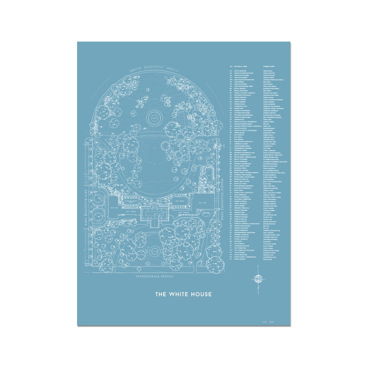 The White House Landscaping Plan - Blue -  Etching Paper Print