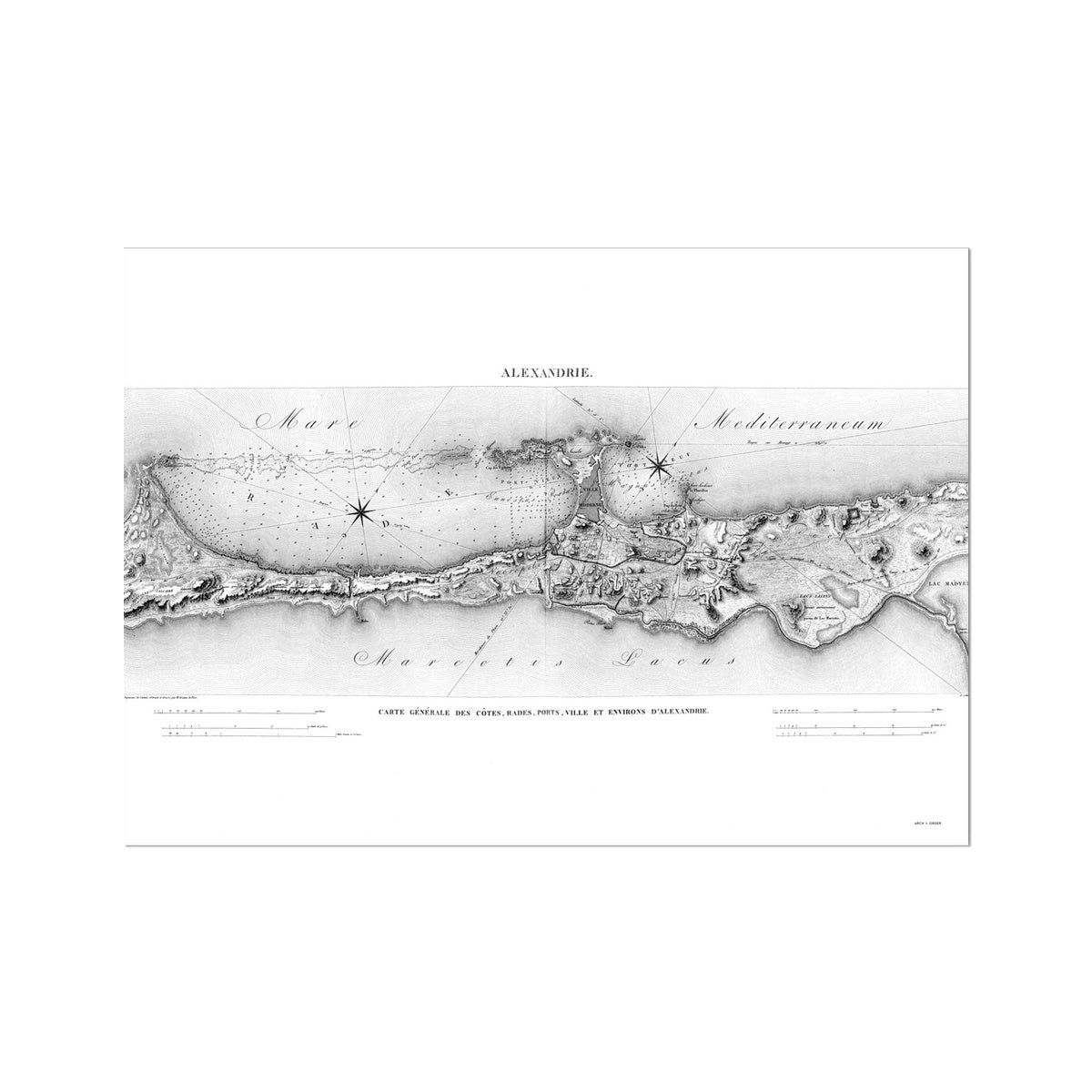 General Map - Alexandria Egypt -  Etching Paper Print