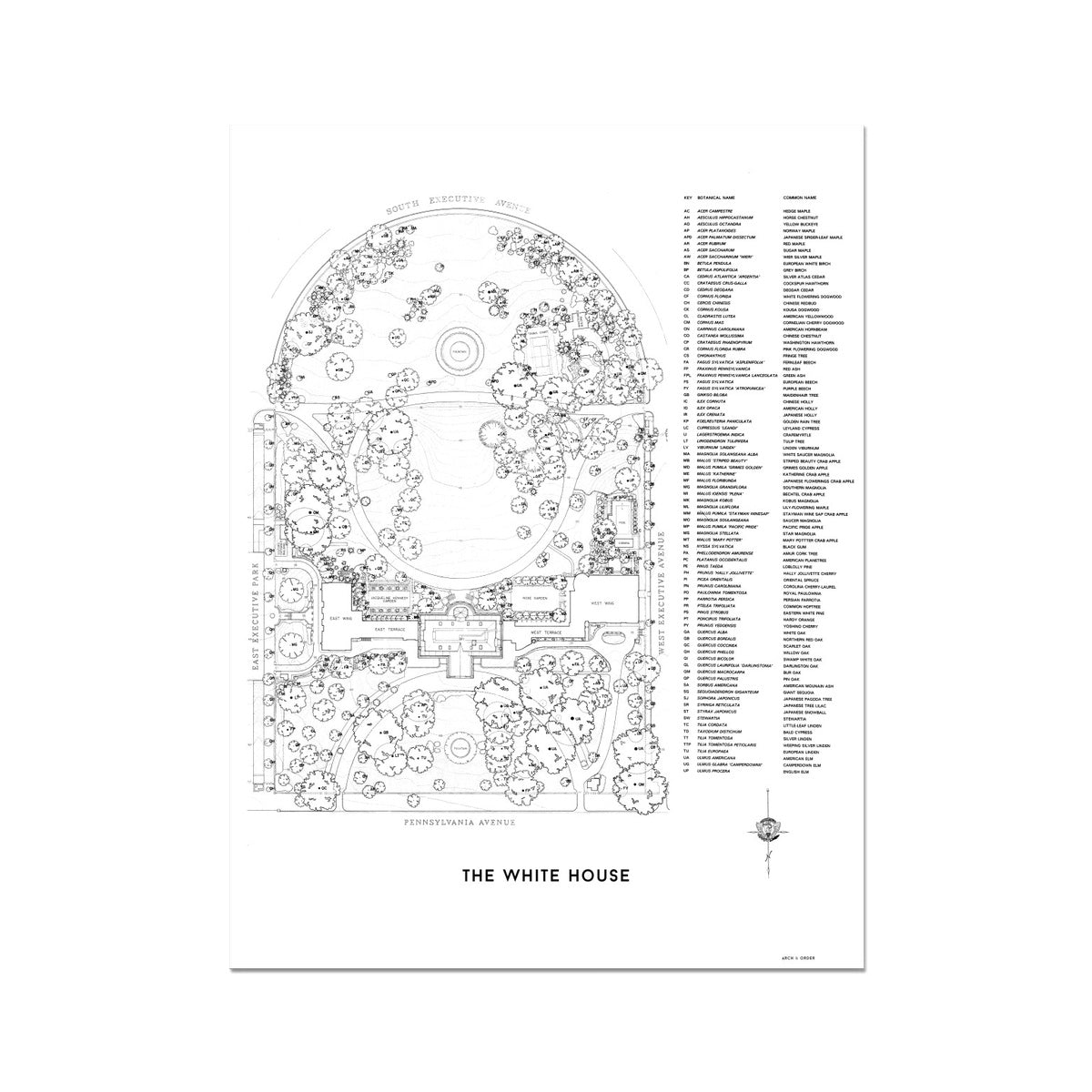 The White House Landscaping Plan - White -  Etching Paper Print