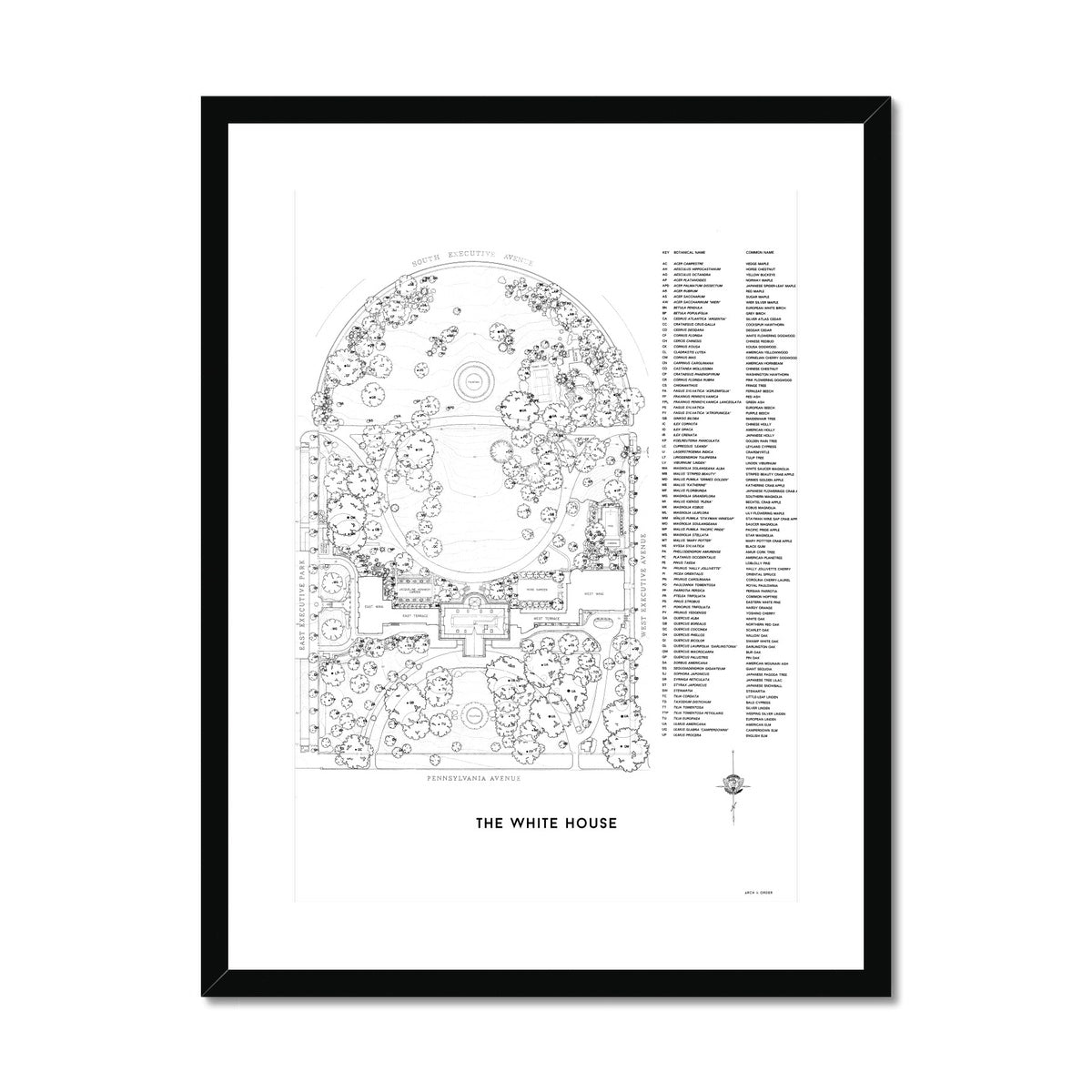 The White House Landscaping Plan - White -  Framed & Mounted Print