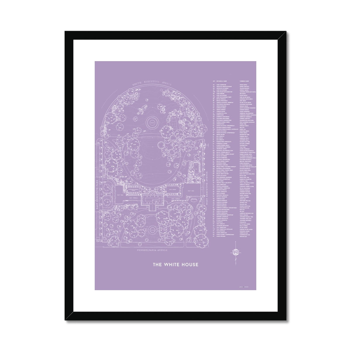 The White House Landscaping Plan - Lavender -  Framed & Mounted Print