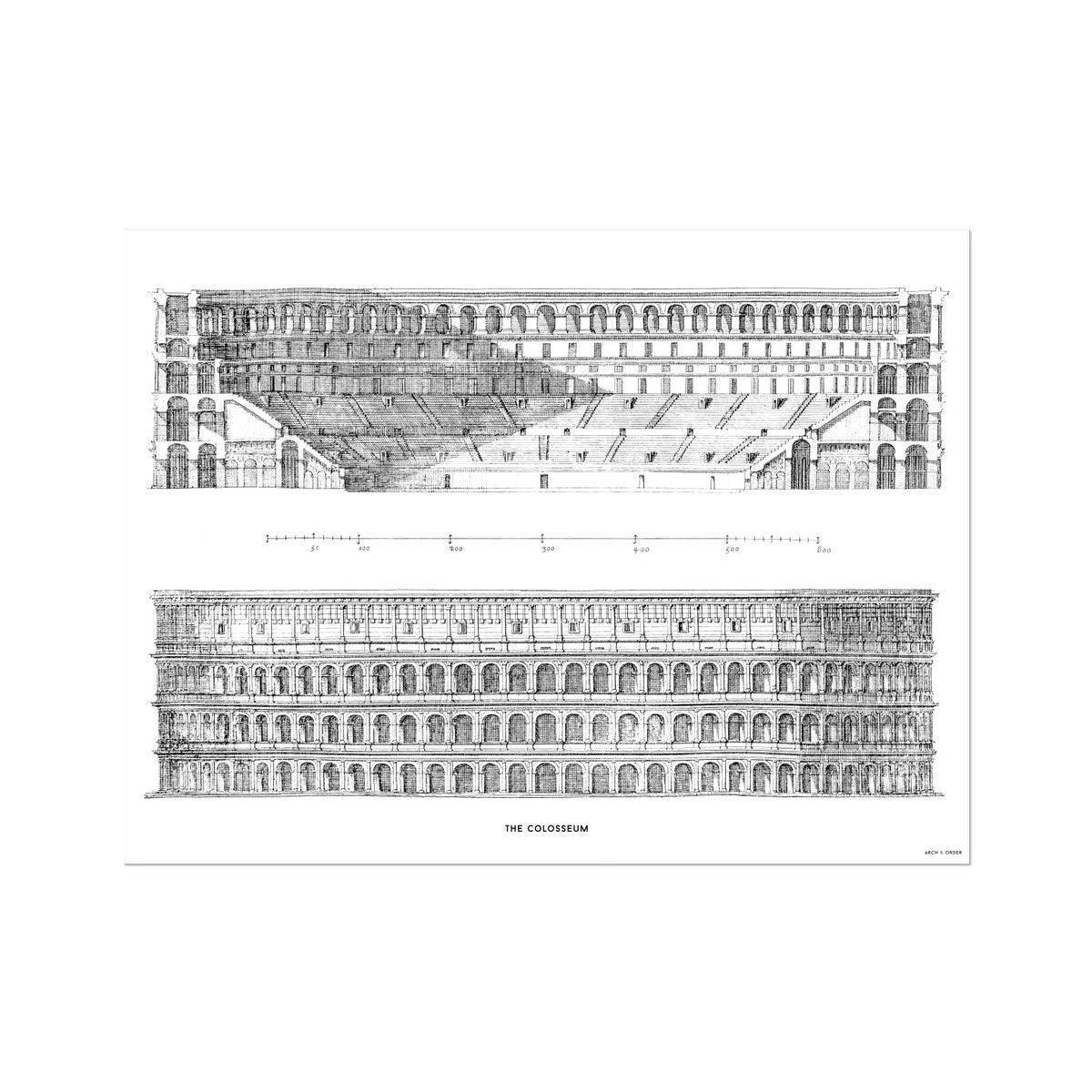 The Colosseum - Primary Elevation and Cross Section - White -  Etching Paper Print