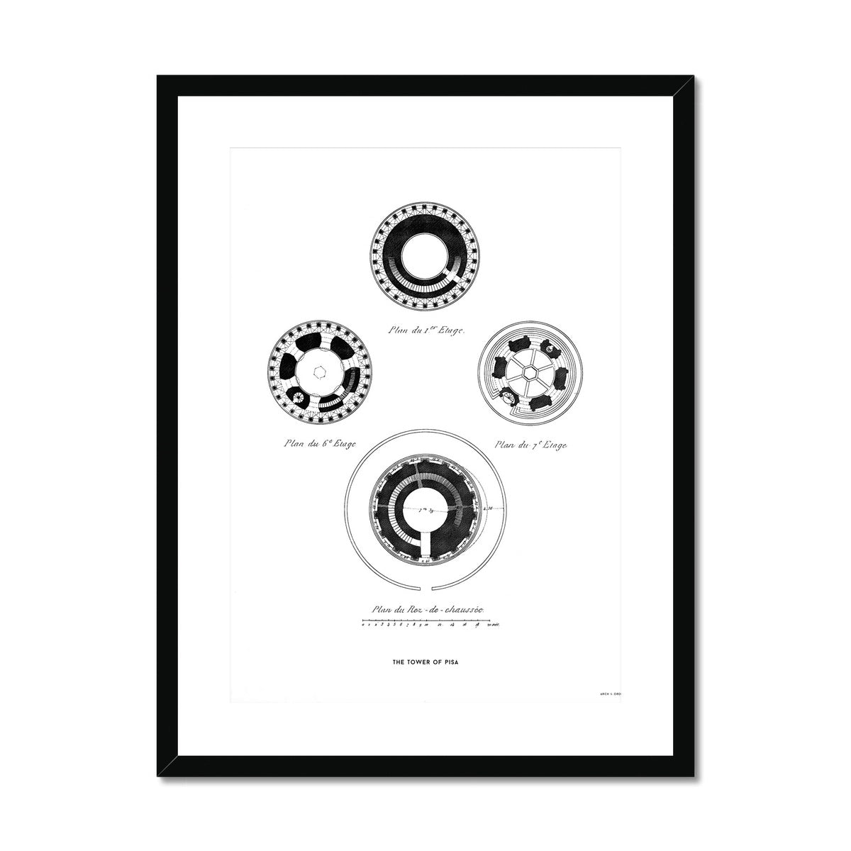Tower of Pisa - Sections - White -  Framed & Mounted Print