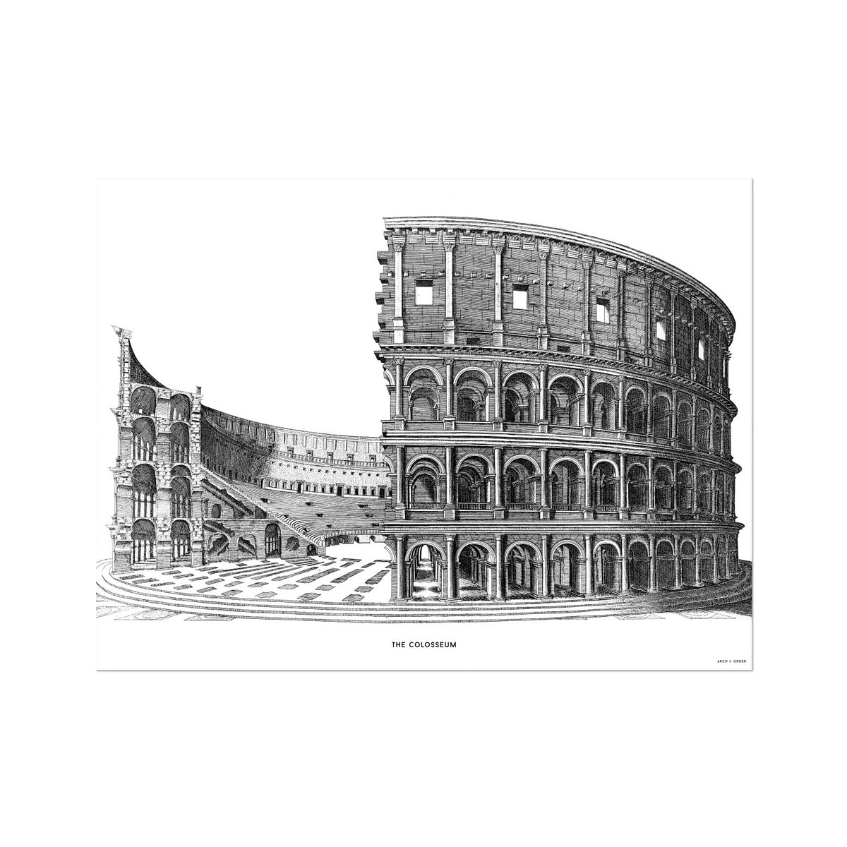 The Colosseum - Cross Section - White -  Etching Paper Print