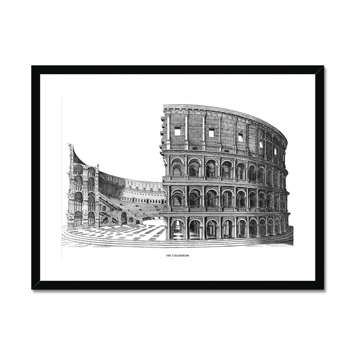 The Colosseum - Cross Section - White -  Framed & Mounted Print