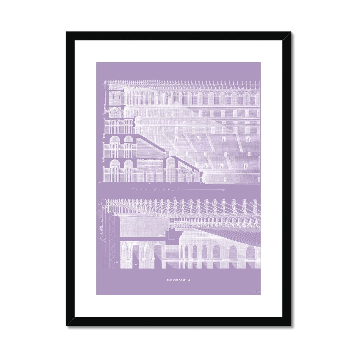 The Colosseum - Section Detail - Lavender -  Framed & Mounted Print