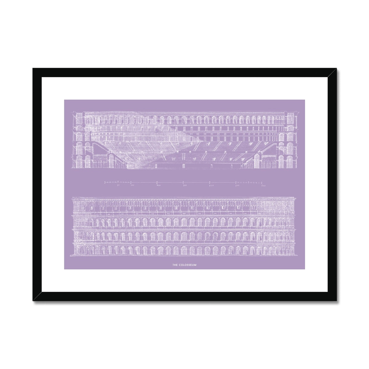 The Colosseum - Primary Elevation and Cross Section - Lavender -  Framed & Mounted Print