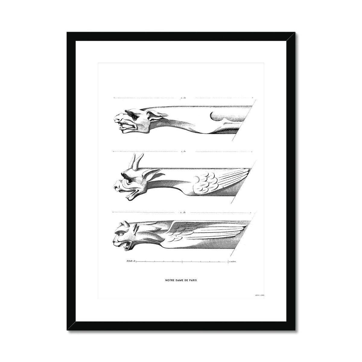 Notre Dame de Paris - Gargoyles - White -  Framed & Mounted Print
