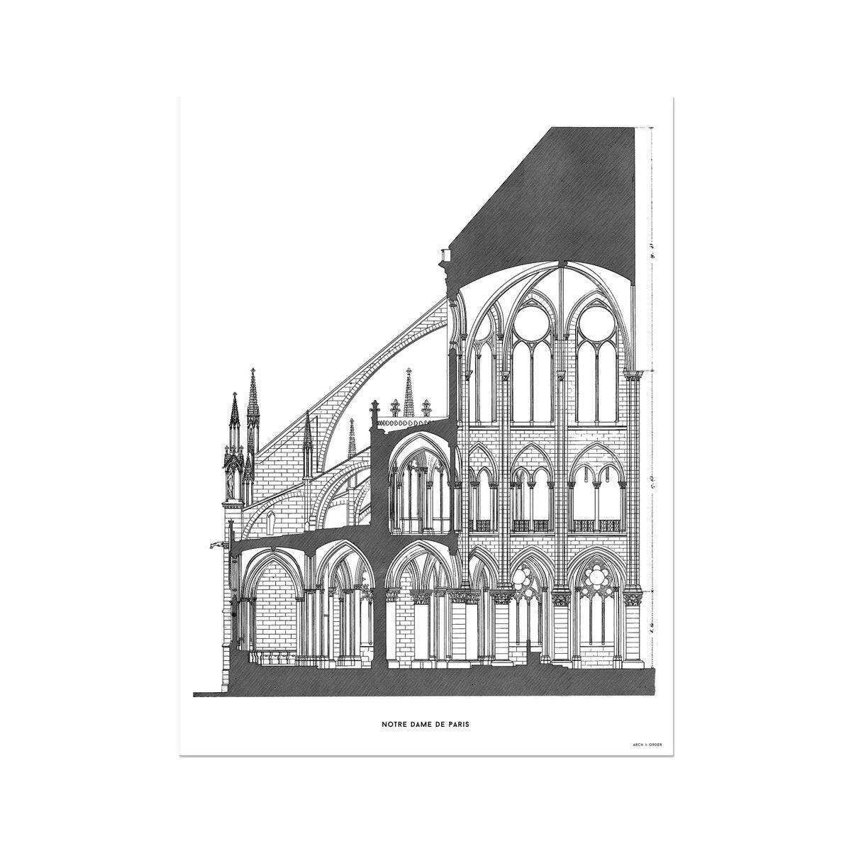 Notre Dame de Paris - Cross Section - White -  Etching Paper Print